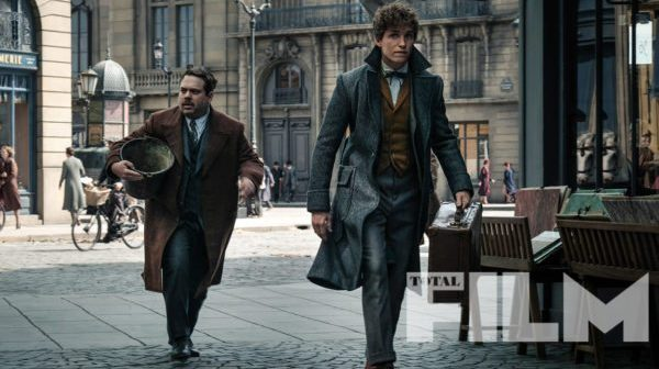 ANIMAIS FANTÁSTICOS :: J.K. Rowling dá resposta misteriosa sobre possível vinda de Newt ao Brasil